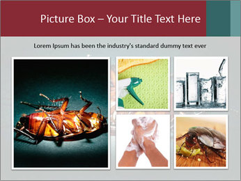 Cockroach extermination PowerPoint Templates - Slide 19