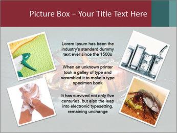 Cockroach extermination PowerPoint Templates - Slide 24