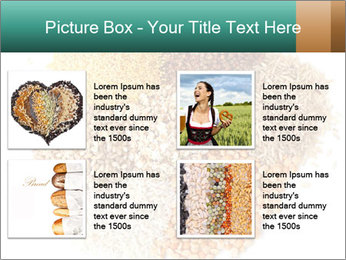 Different kinds of cereals PowerPoint Templates - Slide 14
