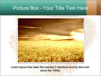 Different kinds of cereals PowerPoint Templates - Slide 15