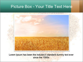 Different kinds of cereals PowerPoint Templates - Slide 16