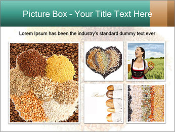 Different kinds of cereals PowerPoint Templates - Slide 19