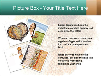 Different kinds of cereals PowerPoint Templates - Slide 23
