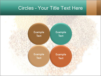 Different kinds of cereals PowerPoint Templates - Slide 38