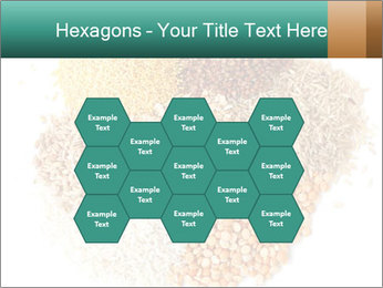 Different kinds of cereals PowerPoint Templates - Slide 44