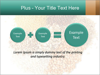 Different kinds of cereals PowerPoint Templates - Slide 75