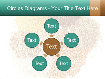 Different kinds of cereals PowerPoint Templates - Slide 78
