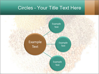 Different kinds of cereals PowerPoint Templates - Slide 79