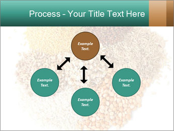 Different kinds of cereals PowerPoint Templates - Slide 91