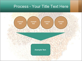 Different kinds of cereals PowerPoint Templates - Slide 93
