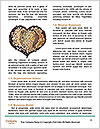 0000092089 Word Templates - Page 4