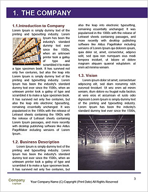 0000092091 Word Template - Page 3