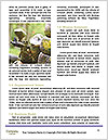 0000092094 Word Templates - Page 4