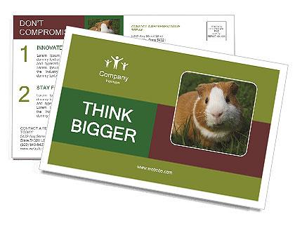 0000092095 Postcard Template