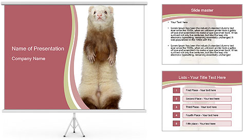 Ferret stands PowerPoint Template
