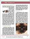 0000092101 Word Template - Page 3