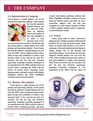 0000092106 Word Template - Page 3
