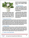 0000092110 Word Templates - Page 4