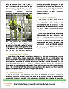 0000092113 Word Template - Page 4