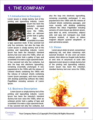 0000092119 Word Template - Page 3