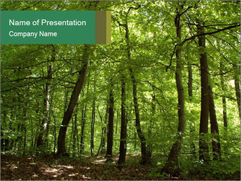 Dense forest PowerPoint Template - Slide 1