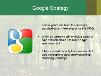 Dense forest PowerPoint Template - Slide 10