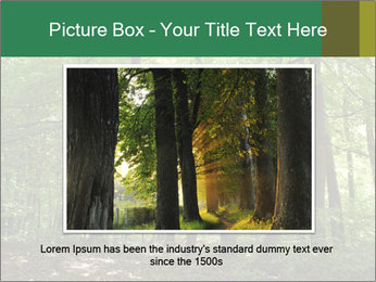 Dense forest PowerPoint Template - Slide 16