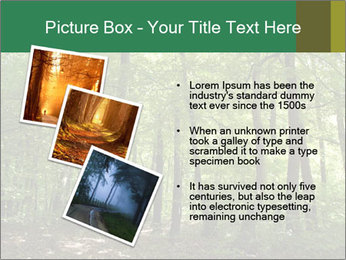 Dense forest PowerPoint Template - Slide 17