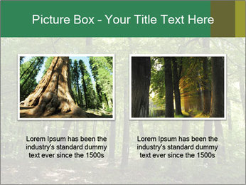 Dense forest PowerPoint Template - Slide 18