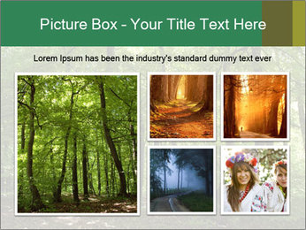 Dense forest PowerPoint Template - Slide 19