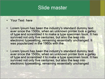 Dense forest PowerPoint Template - Slide 2