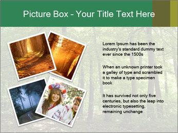 Dense forest PowerPoint Template - Slide 23