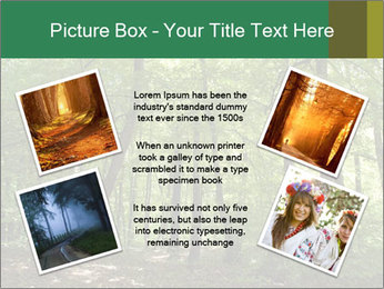 Dense forest PowerPoint Template - Slide 24