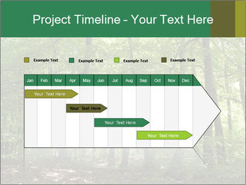 Dense forest PowerPoint Template - Slide 25