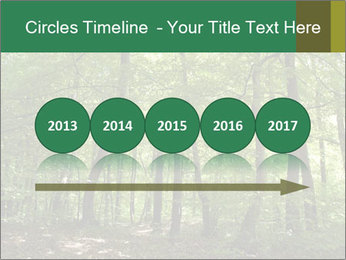 Dense forest PowerPoint Template - Slide 29