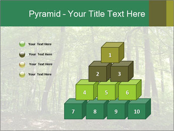 Dense forest PowerPoint Template - Slide 31