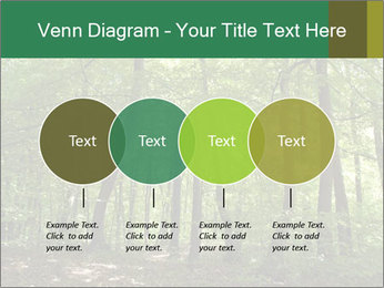 Dense forest PowerPoint Template - Slide 32