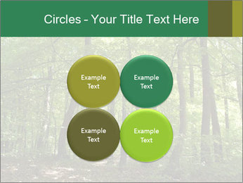 Dense forest PowerPoint Template - Slide 38