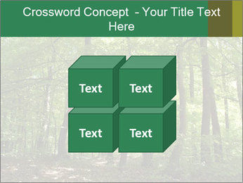 Dense forest PowerPoint Template - Slide 39