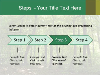 Dense forest PowerPoint Template - Slide 4