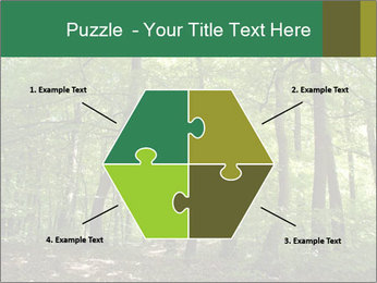 Dense forest PowerPoint Template - Slide 40