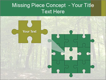 Dense forest PowerPoint Template - Slide 45