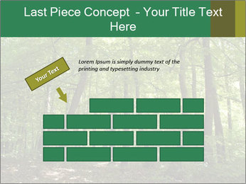 Dense forest PowerPoint Template - Slide 46