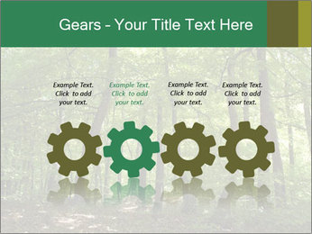 Dense forest PowerPoint Template - Slide 48