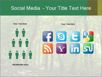 Dense forest PowerPoint Template - Slide 5