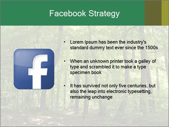 Dense forest PowerPoint Template - Slide 6