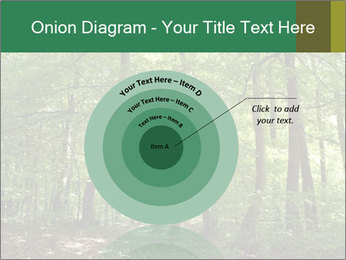 Dense forest PowerPoint Template - Slide 61
