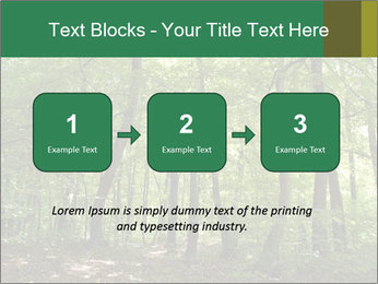 Dense forest PowerPoint Template - Slide 71