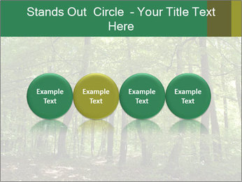 Dense forest PowerPoint Template - Slide 76