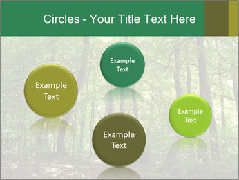 Dense forest PowerPoint Template - Slide 77